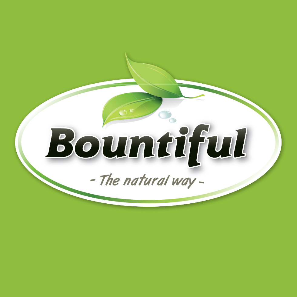 bount01_portfolio